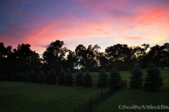 Sunset, (healthy)Vittles&Bits